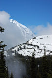 Snowy Mountain and Forest. In Mount Rainier National Park Stock Photos