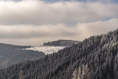 Snowy mountain forest on the hills. Winter Carpathian mountains with hills, snowy forest and clouds in the sky Royalty Free Stock Photos
