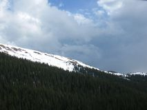 Snowy Mountain Forest. Mountainside forest in the Colorado Rocky Mountains Royalty Free Stock Photography