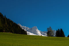 Snowy mountain. And green meadow Royalty Free Stock Image
