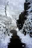 Snowy mountain huangshan. Covered by snow and fog Royalty Free Stock Image