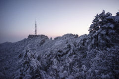 Snowy mountain huangshan. Covered by snow and fog Stock Image