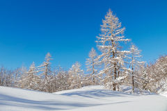 Snowy mountain landscape with the Julian Alps Royalty Free Stock Image