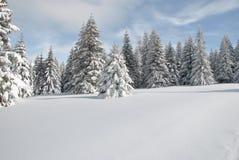 Snowy mountain meadow Royalty Free Stock Photos