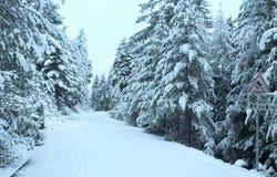 Snowy mountain pass road. Stock Photos