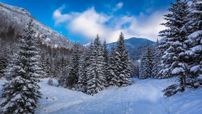 Snowy mountain path in winter Royalty Free Stock Photo