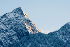 Snowy mountain peak in the Alps at first light Royalty Free Stock Photos