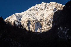 Snowy mountain peak and beautiful light. View from the trekking at Annapurnas circuit, Himalaya, Nepal Stock Photography