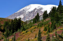 Snowy mountain peak, Mt. Rainier royalty free stock photography