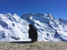 Swiss Alps landscape. Snowy mountain range royalty free stock image