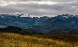 Snowy mountain ridge in late autumn. Hills with forest and weathered grassy meadows. gloomy cold weather with overcast moody sky Royalty Free Stock Images