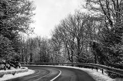 snowy mountain road snow cleared with trees black and white Royalty Free Stock Images