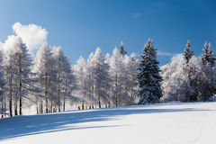 Snowy mountain scenery Stock Photo