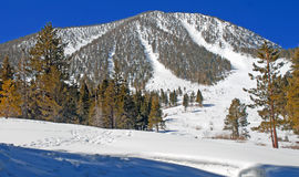 Snowy mountain with ski trails Royalty Free Stock Photo