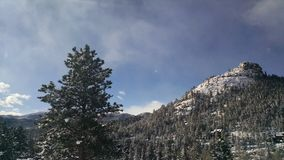 Snowy Mountain. A snow covered mountain with evergreen trees in Estes Park, Colorado Royalty Free Stock Photography