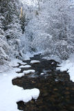 Snowy mountain stream. Royalty Free Stock Photo