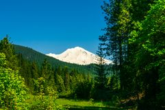 Snowy mountain top background forest Royalty Free Stock Photo