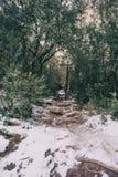 Snowy mountain trail Stock Photos