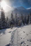 Snowy mountain trail to shelter at winter Stock Photography
