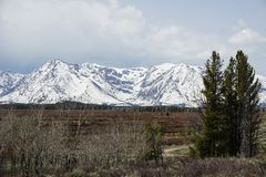 Snowy mountain view of national park Stock Photo
