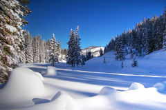 Snowy mountains. Picturesque view of snowed mountains, open area surrounded by trees Royalty Free Stock Image