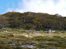 The Snowy mountains. Above the village Thredbo near Jindabyne in New South Wales in Australia Stock Photography