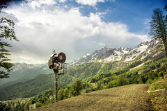 Snowy mountains against the background of green trees. Rosa Khut Royalty Free Stock Photo
