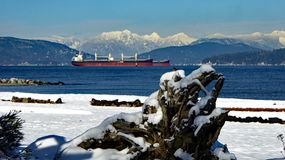 Snowy mountains and beaches frame Vancouver harbor. Snow covered beaches on a bright sunny day frame a cargo ship in Vancouver harbor against white mountain royalty free stock photos
