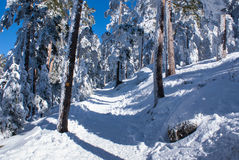 Snowy mountains and bola del mundo in Navacerrada, Madrid, Spain Royalty Free Stock Photography