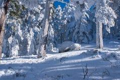 Snowy mountains and bola del mundo in Navacerrada, Madrid, Spain Stock Photography