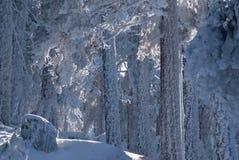 Snowy mountains and bola del mundo in Navacerrada, Madrid, Spain Stock Photo