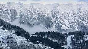 Snowy mountains. Snowy Carpathians and a veil of fog over the frozen forest Royalty Free Stock Photography