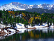 Snowy mountains and forest
