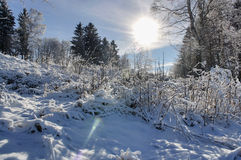 Snowy mountains. Krkonose in Europe Stock Photos