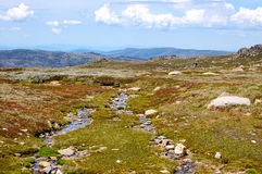 Snowy Mountains Plateau - Thredbo Royalty Free Stock Images