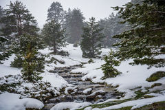 Snowy mountains with river in Madrid. Stock Photography