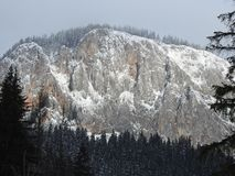 Snowy mountain landscape with woods and snow royalty free stock images