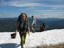 Snowy mountains in the summer Royalty Free Stock Photo
