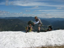 Snowy mountains in the summer Royalty Free Stock Photos