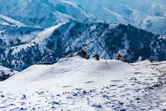 Snowy mountains of Tien Shan in winter Royalty Free Stock Photo
