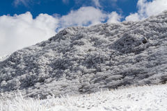 Snowy Mountainside with Blue Sky. A sunny day after snowfall on the slopes of Mt. Hossho in Aso-Kuju National Park in Japan Royalty Free Stock Images