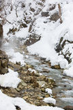 Snowy Mountainside, Steamy Water, Camouflaged Snow Monkeys Royalty Free Stock Photography