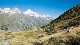 Snowy Mountens in the Alps Royalty Free Stock Image