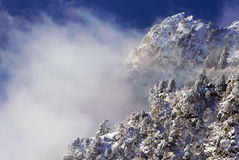Snowy moutains, trees, and clouds. Snowy foothills, trees and sea of clouds, le revard, france Royalty Free Stock Photos