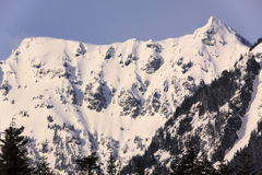 Snowy Mt Chikamin Peak Snoqualme Pass Washington Royalty Free Stock Image