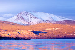 Snowy Mt Laurier frozen Lake Laberge Yukon Canada. Warm evening light on snow-covered Mount Laurier on the eastern shore of frozen Lake Laberge  Yukon Territory Stock Photos