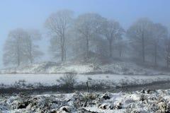Snowy mystical scene Stock Photo