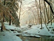 Snowy-Nebenfluss Stockfotos
