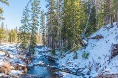 Snowy-Nebenfluss Stockfoto