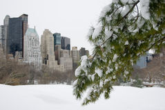 Snowy New York City Skyline Royalty Free Stock Image